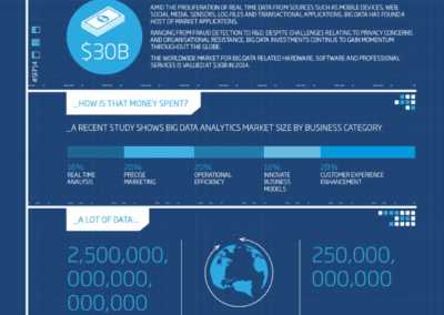 Big Data Infographic Design Service