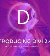 Introducing Divi 2.4